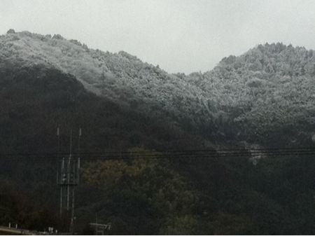寒い〜_f0082141_20445272.jpg
