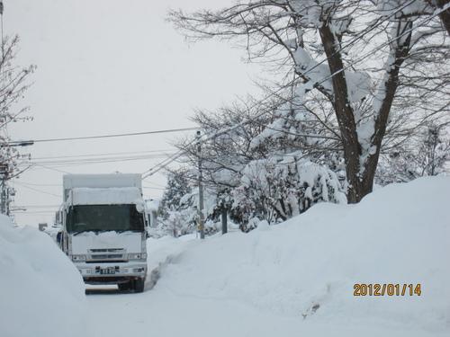 *厳寒・ドカ雪*_f0231042_2010291.jpg