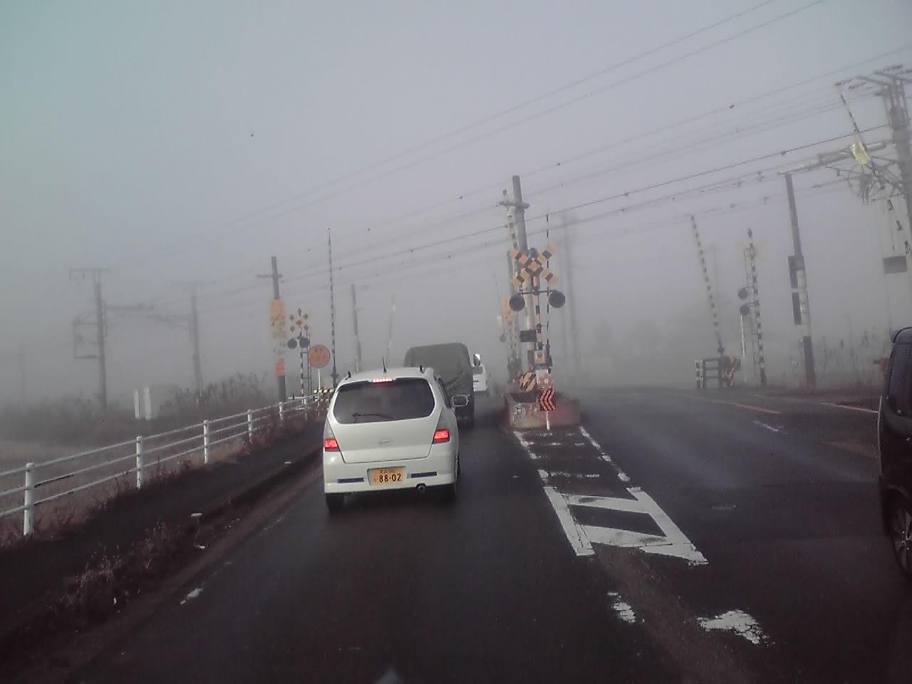 霧中(夢中)_e0185369_1256509.jpg