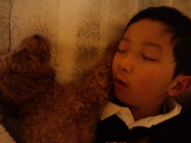 犬と息子_f0197703_251017.jpg