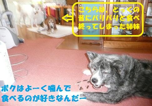 f0121712_14182988.jpg