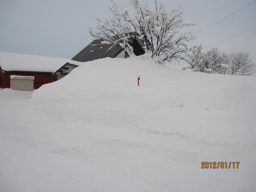 積雪194センチ 岩見沢限界!_f0231042_14124475.jpg