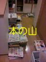 b0003855_1555946.jpg