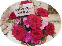 f0042665_22485852.jpg