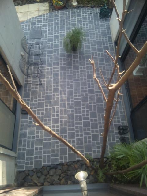 中庭のタイル_e0215179_13504950.jpg