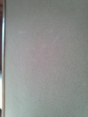 a0255880_18575611.jpg