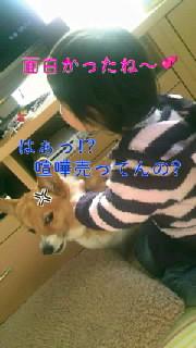 b0076384_2221249.jpg