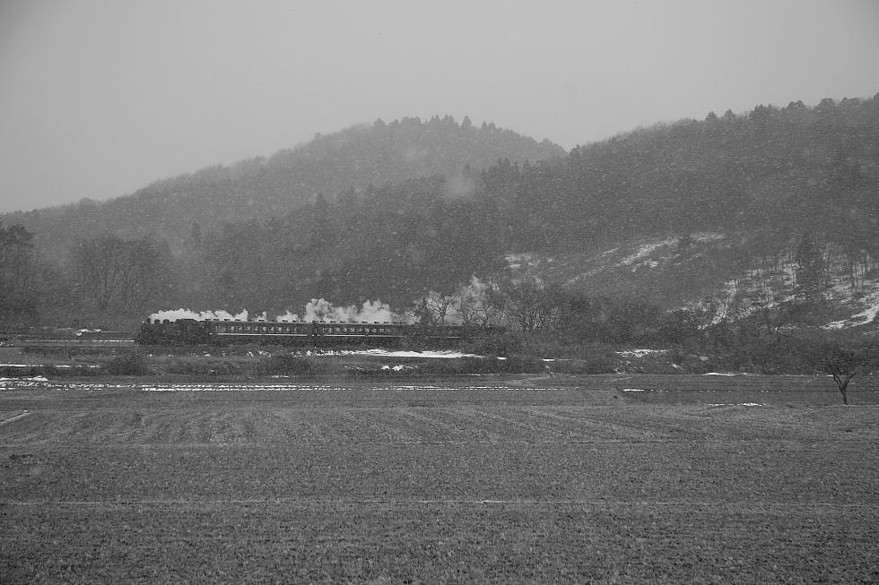 降り始めた雪 - 2010年・真岡 -_b0190710_23362452.jpg