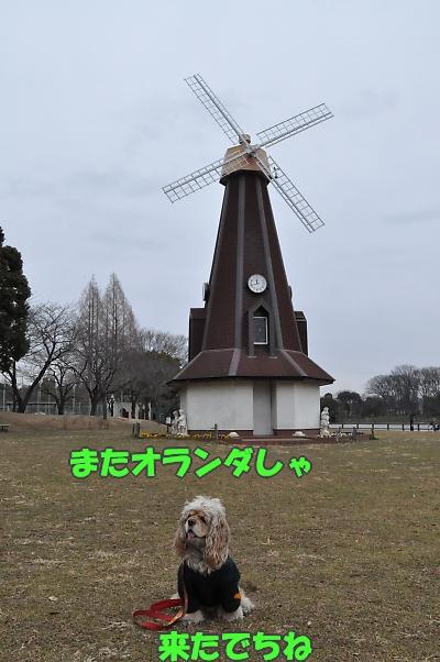 b0067012_1364812.jpg