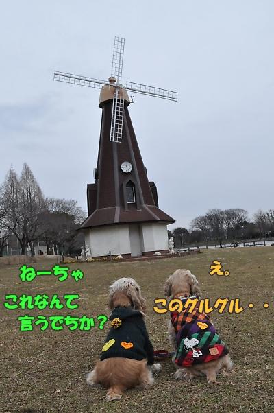 b0067012_1445190.jpg