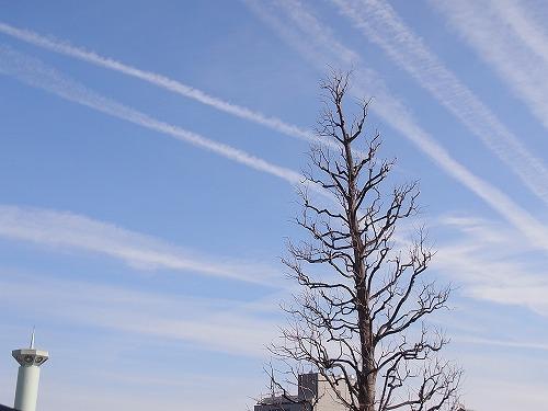ひこうき雲。_b0157216_23264391.jpg