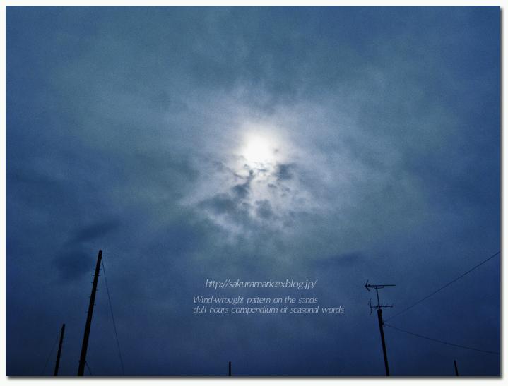 下り坂の寒空。_f0235723_15295180.jpg
