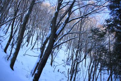 雪の三峰山 1235m   奈良県_d0055236_0113865.jpg