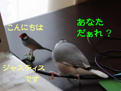 b0158061_20353786.jpg