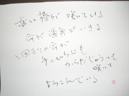 a0053480_8224770.jpg
