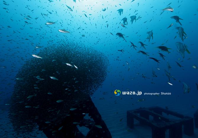 漁礁レッスン、魂の一枚_d0198511_22232728.jpg