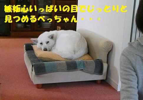 f0121712_16282034.jpg