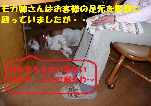 f0121712_1629461.jpg