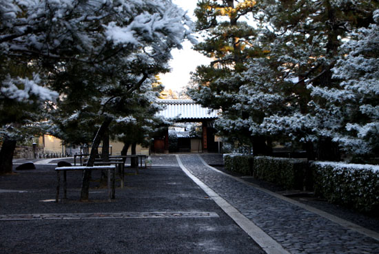 淡雪2 大徳寺本坊_e0048413_22585194.jpg