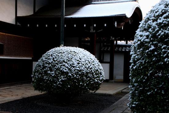 淡雪2 大徳寺本坊_e0048413_22592310.jpg