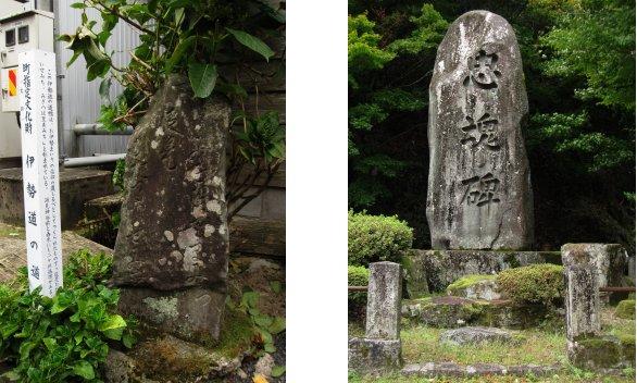 隠岐編(37):若桜(10.9)_c0051620_6192673.jpg