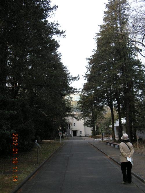 世俗と隔絶した国立天文台と非常に世俗的な新年会_e0223735_202533.jpg