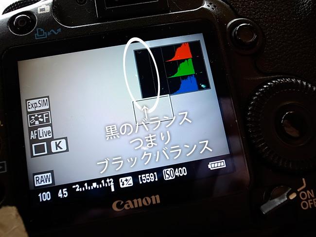 a0032346_9101172.jpg