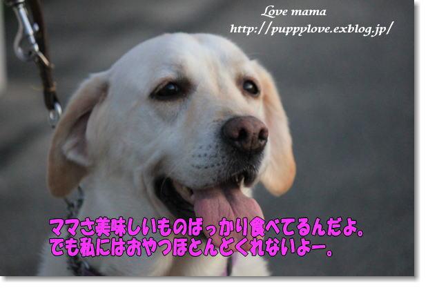 b0136683_925177.jpg