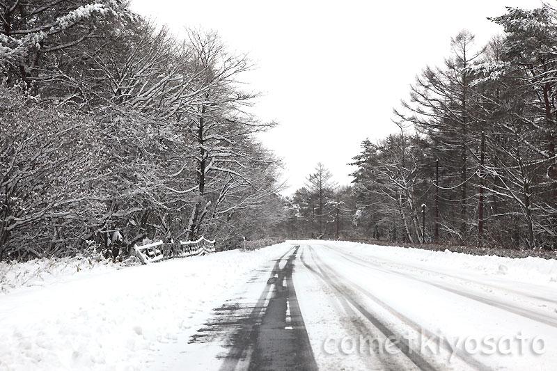 本格的な冬景色の清里です_b0179231_0244588.jpg