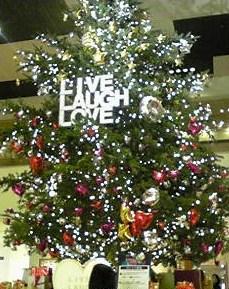 クリスマス飾り_b0242032_43110.jpg