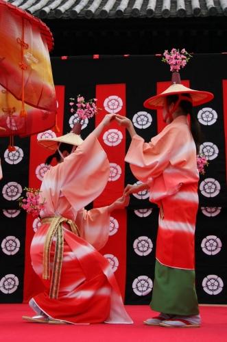 京都 随心院のはねず踊り_c0196076_23225546.jpg