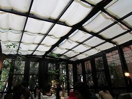 GREEN HOUSE Silva / 不思議の国のシルヴァ_e0209787_14445694.jpg