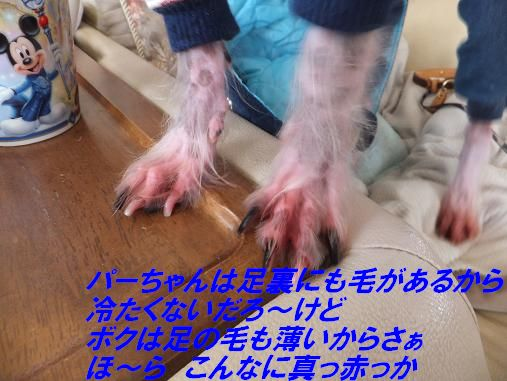 f0179203_1242644.jpg
