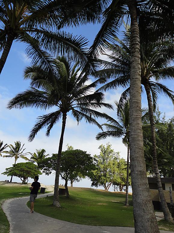 ハワイ8_e0230011_17504463.jpg