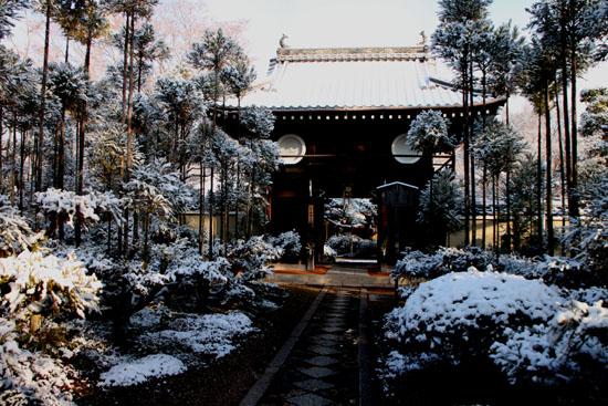 淡雪4 鷹ヶ峰辺り_e0048413_20565664.jpg
