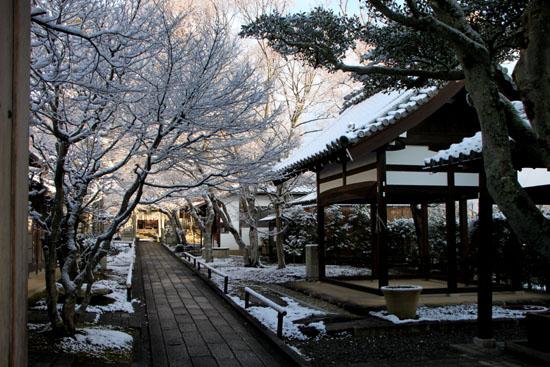 淡雪4 鷹ヶ峰辺り_e0048413_20574720.jpg