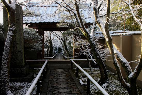 淡雪4 鷹ヶ峰辺り_e0048413_2057975.jpg