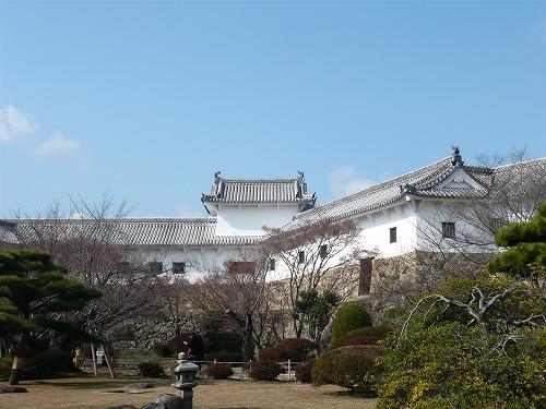 天空の白鷺☆_f0223914_1720335.jpg