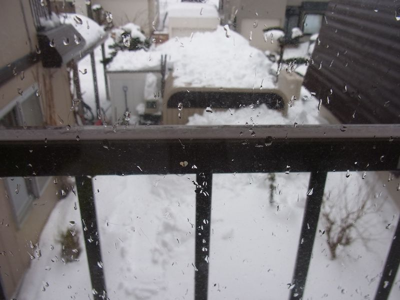 大寒の雨_c0025115_22443018.jpg