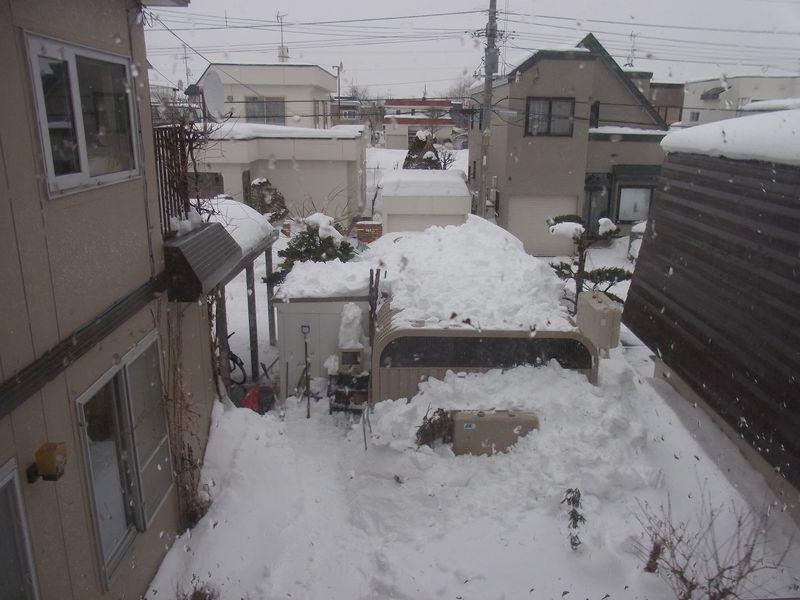 大寒の雨_c0025115_22443235.jpg