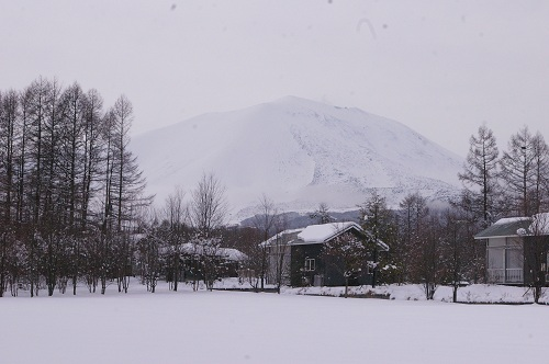 雪が降りました♪_b0174425_127621.jpg