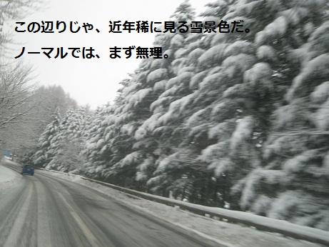 c0206342_20402587.jpg