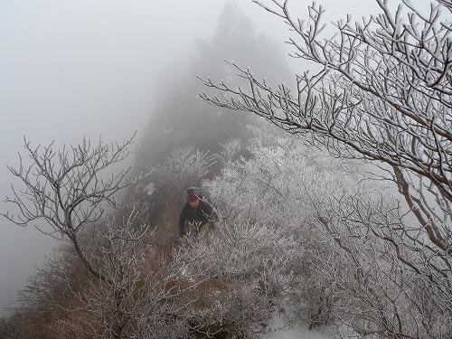 由布岳へ_b0161750_2382997.jpg