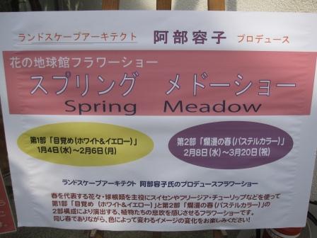 花フェスタ記念公園の地球館へ_a0243064_13291298.jpg