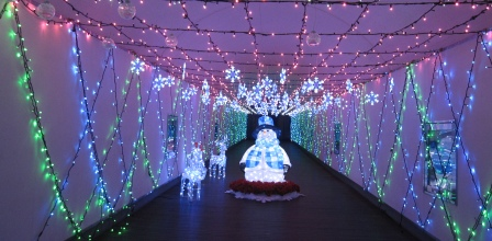 花フェスタ記念公園の地球館へ_a0243064_1347105.jpg