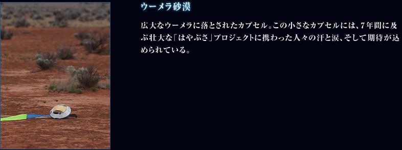 f0165567_728022.jpg