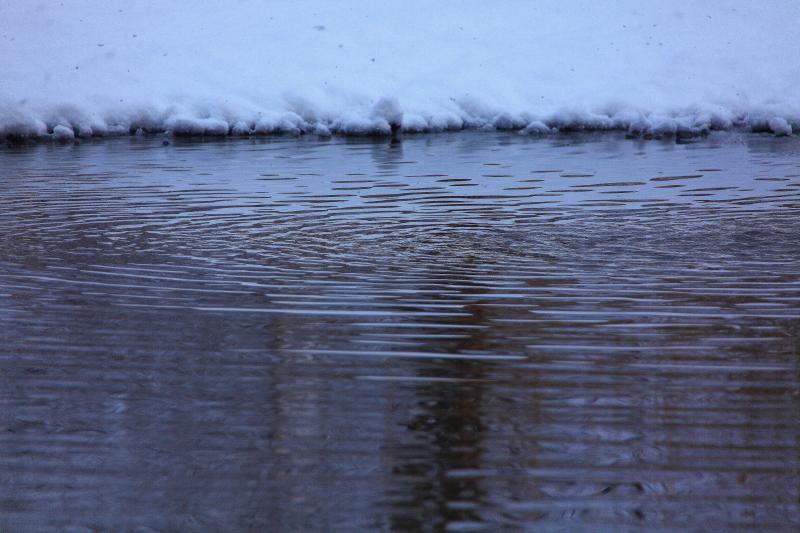 雪の日_f0075075_11173741.jpg