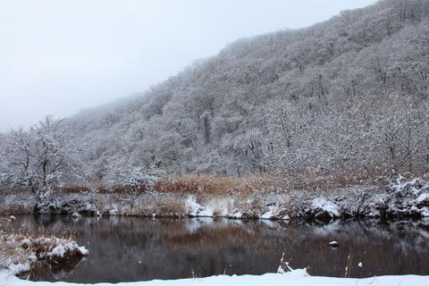 雪の日_f0075075_1117762.jpg