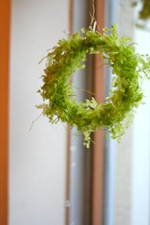 green  wreath  _b0209477_1752233.jpg