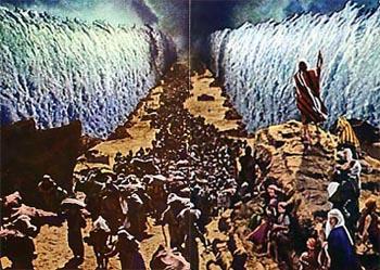 1月22日出エジプト13-15章『人間心理をよく理解しておられる主』_d0155777_7554382.jpg